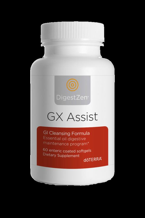 gx_assist